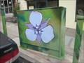 Image for Oakland Star Tulip - Oakland, CA