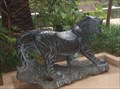 Image for Sitarra - Siegfried & Roy's Royal White Tiger Matriarch