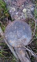 Image for T37S R9E SECS 10 11 14 15 LS 290 Section Corner - Klamath County, OR