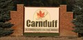 Image for Carnduff - A Community on the move!
