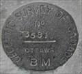 Image for BM3581