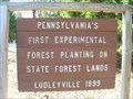 Image for Pennsylvania's First Experimental Forest