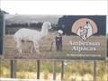 Image for Ambersunalpacas - Mt Compass SA, Australia