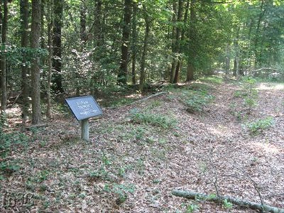 Some of the original earthworks still exist such as these Federal trenches.