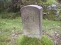 Image for  B/MT Stone, Burn Cott, West Blackdown, Dartmoor, Devon UK
