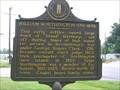Image for William Worthington / Island Kentucky