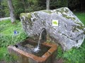 Image for Fontaine de Richert, Vosges, France