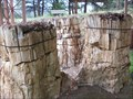 Image for Redwood Trio - Florissant Fossil Beds National Monument, CO