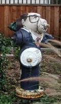 Image for Quentin Kopp hydrant, Belmont, CA