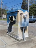 Image for Blue Jay Face - Hayward, CA