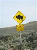 Image for Buffalo Crossing - Antelope Island Park, Utah
