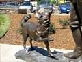 Image for Scotch, dog of Enos A. Mills - Estes Park, CO