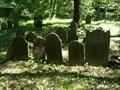 Image for židovský hrbitov / the Jewish cemetery, Myslkovice,  Czech republic