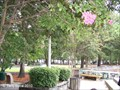 Image for Chapin Memorial Park  -  Myrtle Beach, SC