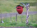 Image for The Strawberry Mail Box. Awakino. New Zealand.