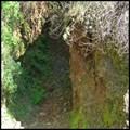 Image for Natoma Ground Sluice Diggings - Folsom, CA