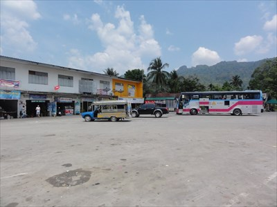 Local and larger buses.