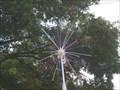 Image for Deland Fireworks Tree - Deland, FL