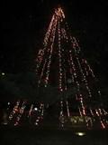Image for Santa Clara Christmas Tree - Santa Clara, CA