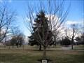 Image for Ken Pikus, Jr. - Lakeview Cemetery - Cinnaminson, NJ