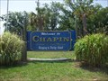 Image for Welcome to Chapin
