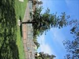 Image for Paula Donlon - Antioch, CA