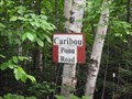 Image for Caribou Pond Road - Maine, USA