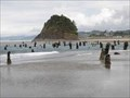 Image for Neskowin Ghost Forest - Oregon