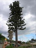 Image for Greenway Pine Cell Tower - Whittier, CA