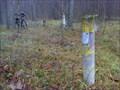 Image for Benchmark next to Bikernieku track