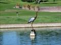 Image for Big Blue - Fountain Park Fountain Hills Arizona