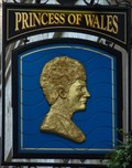 Image for Princess of Wales - Villiers Street, London, UK.