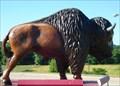 Image for Big Buffalo - Bucksnort, TN