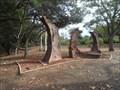 Image for Tierra y Cielo  -  San Jose, CA