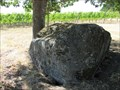 Image for Ice Age Flood Erratic, Left Coast Cellars, Rickreall, Oregon