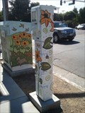 Image for Neighborhood Box - San Jose, CA