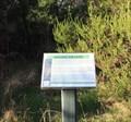 Image for Warringine Park, Hastings, Victoria, Australia-Healing the Land