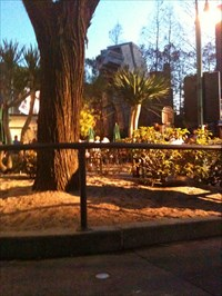 Fading light and a blurry shot, but hey, it's got an AT-AT!