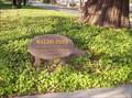 Image for Waldo Park Tree - Salem, Oregon