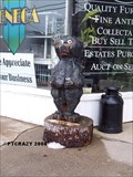 Image for Lil Brown Bear - Oswego, New York