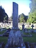 Image for Smyth - Tavistock Cemetery - Devon, UK