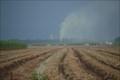 Image for Assumption Parish Oil Well Blows Out- Paincourtville, LA
