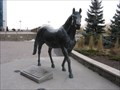 Image for Northern Dancer - Toronto, Ontario