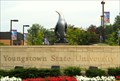 Image for Youngstown State University