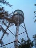Image for Biggs Water Tower, Biggs, CA