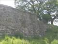 Image for Caistor Roman Town Venta Icenorum