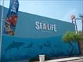Image for Arizona Sea Life Aquarium