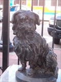 Image for Greyfriars Bobby in San Diego, CA