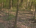 Image for Wesselman Park Woods - Evansville, IN