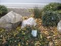 Image for Milk White Quartz - San Jose, CA